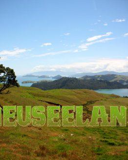 Neuseeland Geschenke für Reisende, die in Neuseeland waren