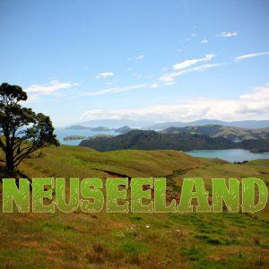Geschenke für Reisende, die in Neuseeland waren