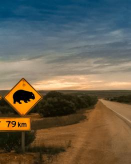 Australien Geschenke für Reisende, die in Australien waren