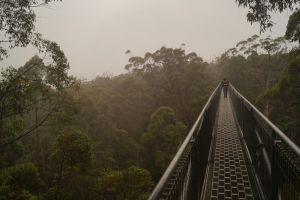 Western Australia: Das Tal der Giganten