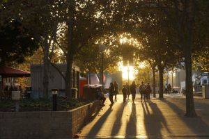 10 Dinge, die man in Perth tun sollte