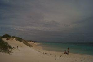 Das Ningaloo Reef an Australiens Westküste – Schwimmen mit den Walhaien