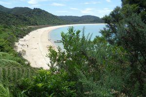 Abel Tasman Nationalpark – Die neuseeländische Karibik