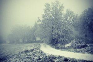 Winter Melancholia