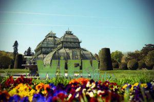16 Wien Tipps & Sehenswürdigkeiten, die deinen Wien Städtetrip unvergesslich machen