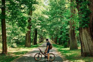 Fahrrad-Tour Düsseldorf: Die besten Strecken in der Umgebung