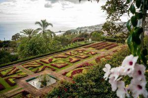 Funchal Sehenswürdigkeiten: Die 14 Highlights für deinen ersten Besuch