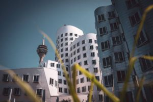 Hidden Gems: The coolest Düsseldorf attractions, that only locals know