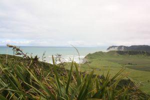 The East Cape: Irgendwo im Nirgendwo
