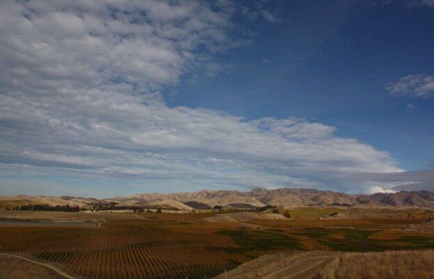 Blenheim Landschaft Neuseeland