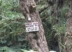 Pukekoura Park