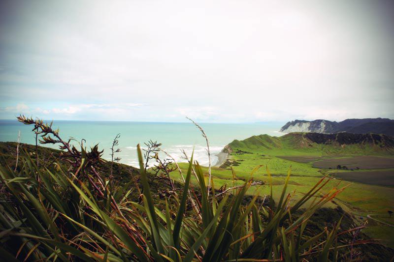 Die einsame Landschaft am East Cape Neuseeland