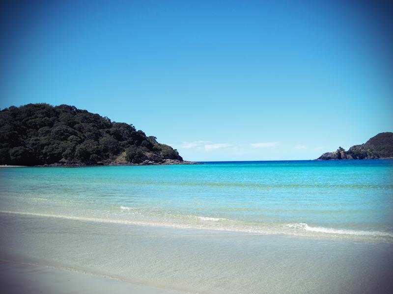 Die einsame Matai Bay in den Northlands Neuseeland