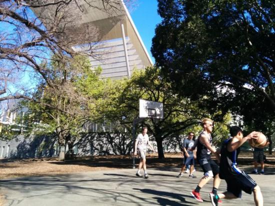 Melbourne Museum Basketball