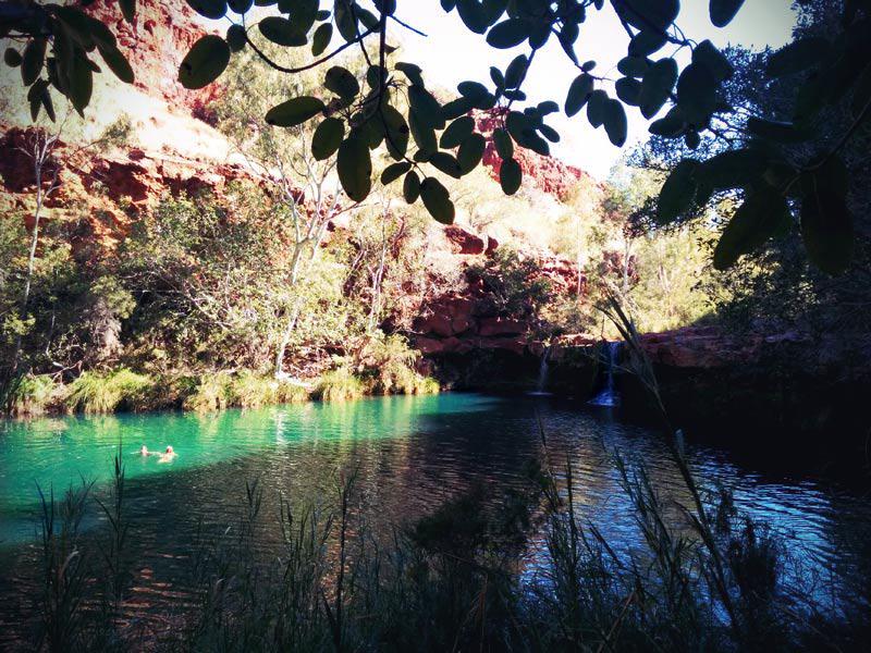 Karijini Nationalpark Fern Pool