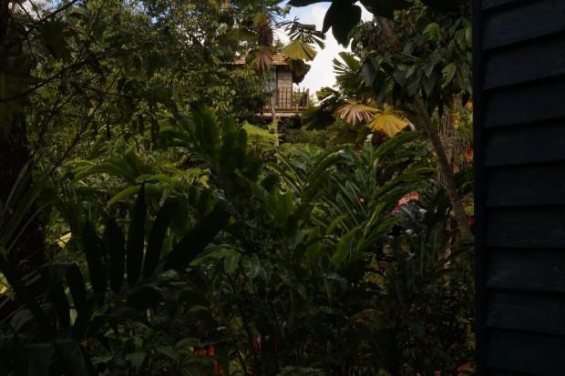 Kuranda bei Cairns