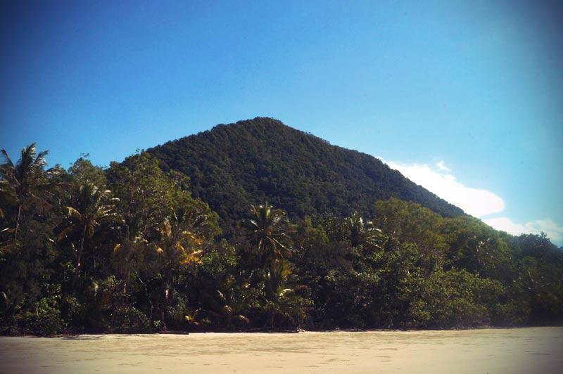 Grenze zum Regenwald am Thornton Beach