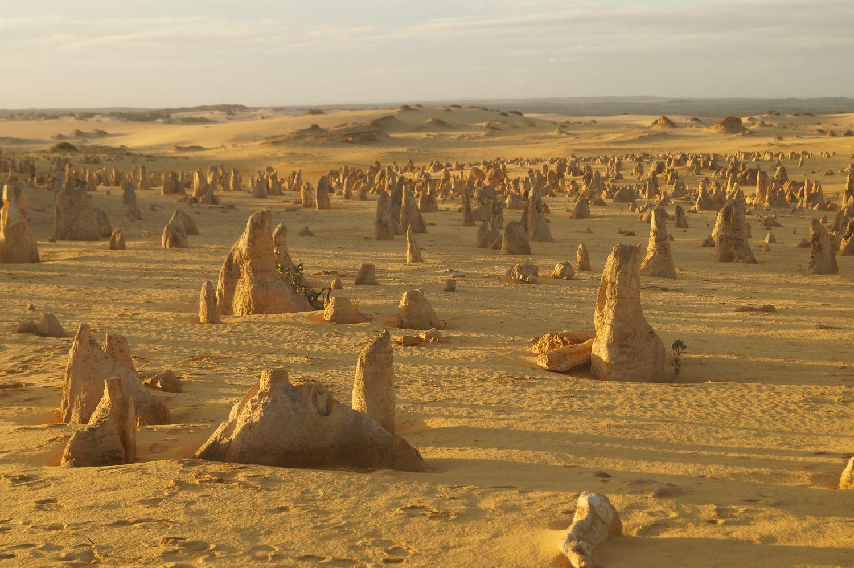 Westküste Australien: pinnacles Desert