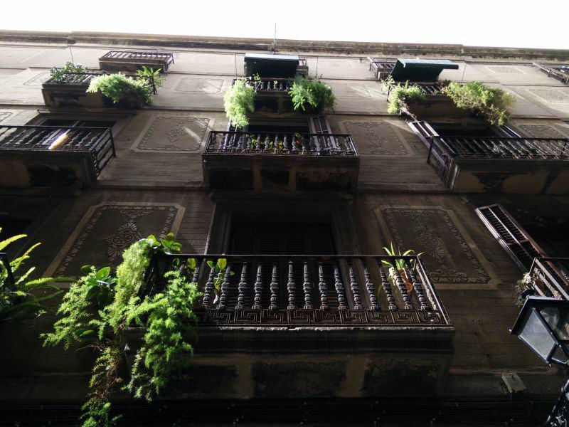 Balkone in El Raval mit hängenden Pflanzen