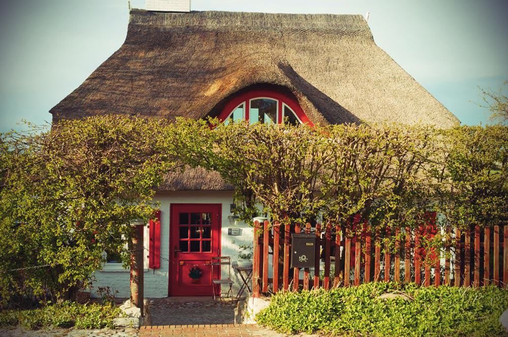 house with thatched roof in Ahrenshoop at the baltic sea