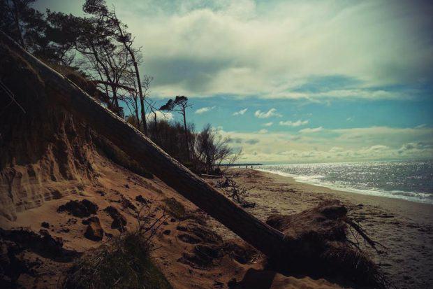 Weststrand Darß Ahrenshoop