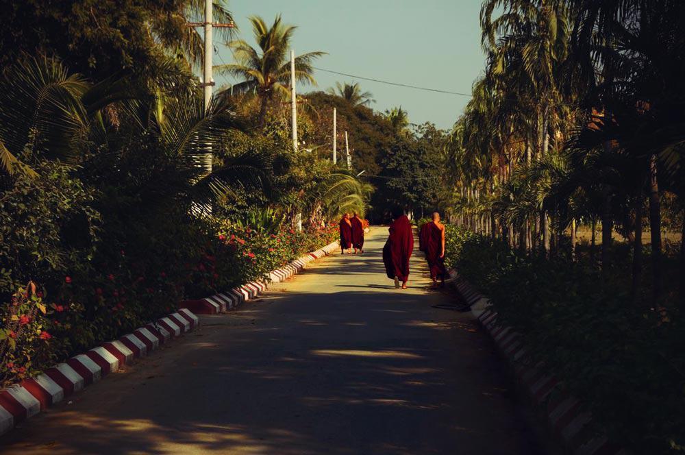 Mönche spazieren auf Weg