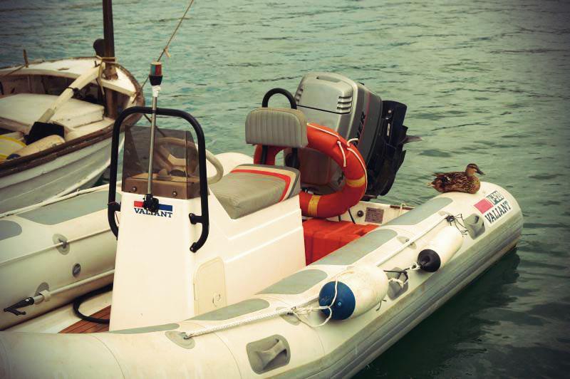 Ente Port d'Antdratx
