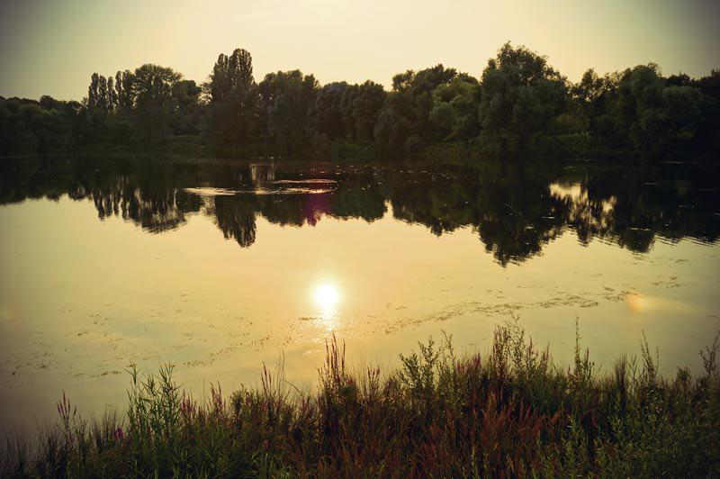 Sonnenuntergang am Deichsee im Südpark in Düsseldorf