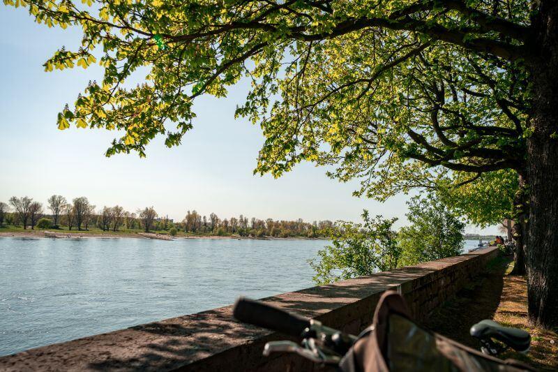Bicycle break on the banks of the Rhine in Düsseldorf