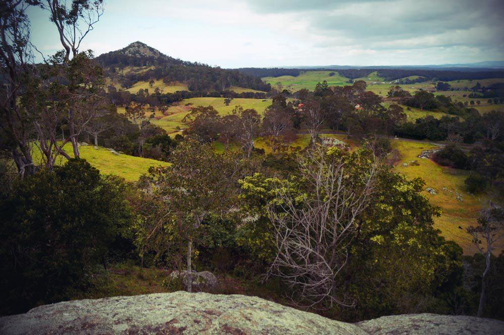 grüne Wiesen im Hinterland von Narooma in New South Wales in Australien