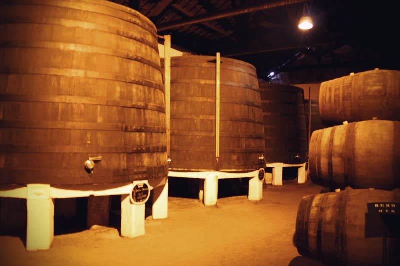 Alte Holzfässer mit Portwein