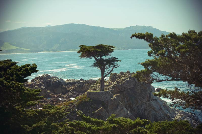 Roadtrip Kalifornien Lone Pine 17 Mile Drive
