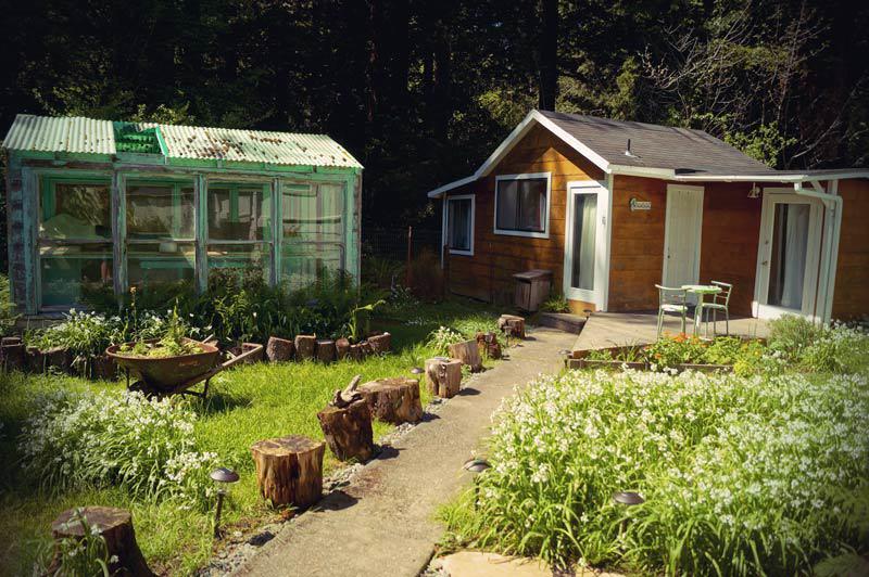 Roadtrip Kalifornien Airbnb Redwood Trees