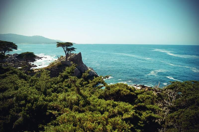 Pacific Coast Highway: Lone Cypress am 17 Mile Drive