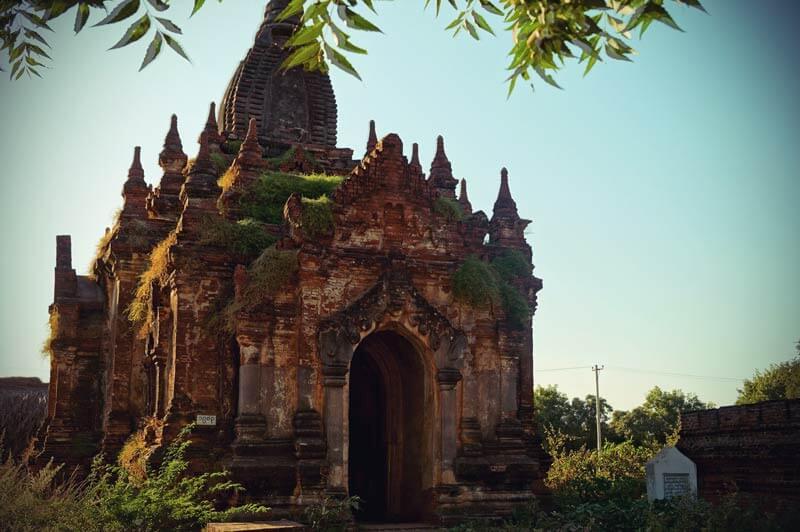 Ein verfallener Tempel in Bagan über den schon Graß wächst