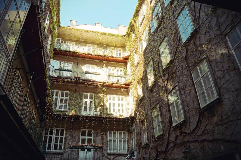 EEin mit Pglanzen bewachsener Hinterhof in der Altstadt Wiens