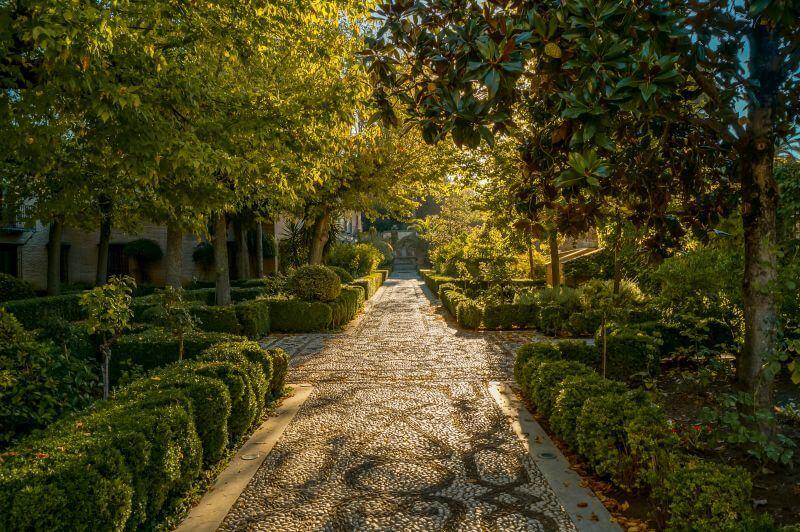 Sonnengetränkter Weg mit Bäumen in der Alhambra