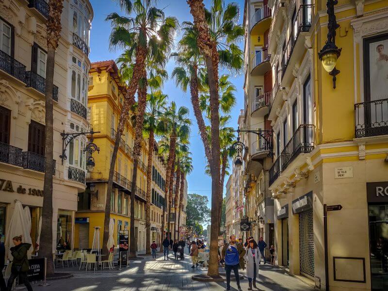 Málaga Tipps von Palmen gesäumte Allee in der Altstadt