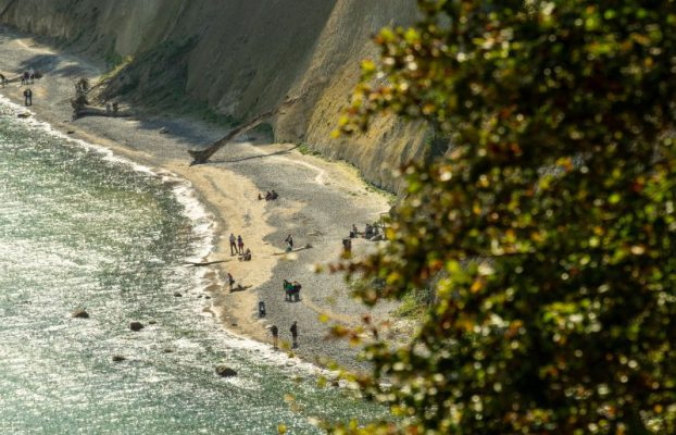 People collect amber on the chalk coast of Rügen in Jasmund National Park