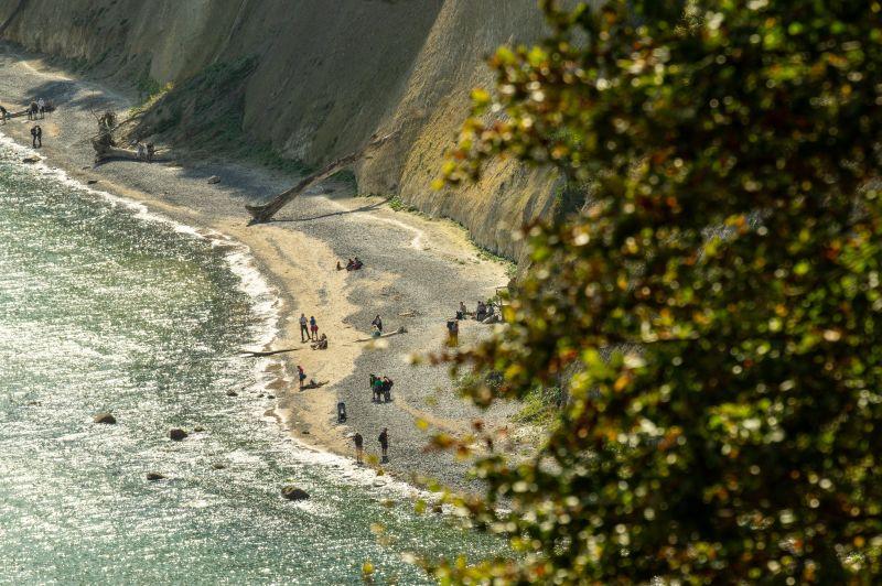Menschen sammeln Bernsteine an der Kreidesküste auf Rügen im Jasmund Nationalpark