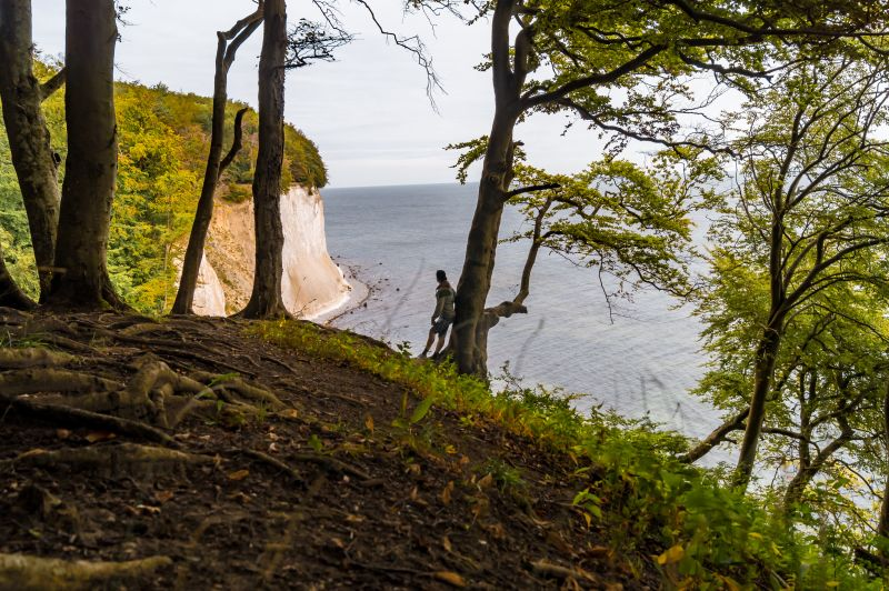 Mann lehnt an Baum auf dem Hochuferweg im Jasmund Nationalpark auf Rügen
