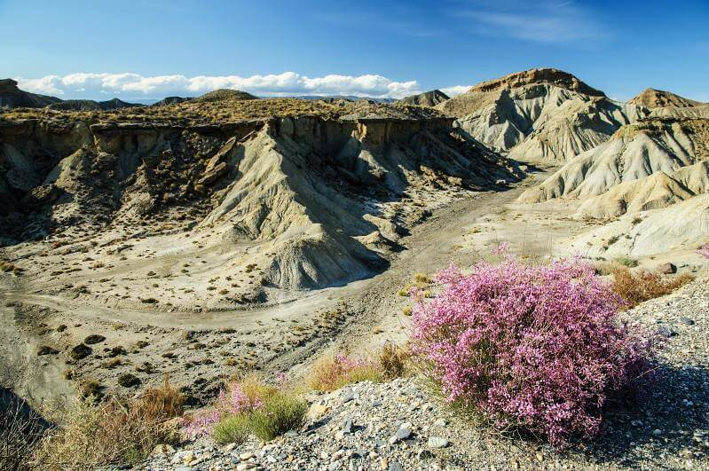 Die Tabernas Wüste in Andalusien