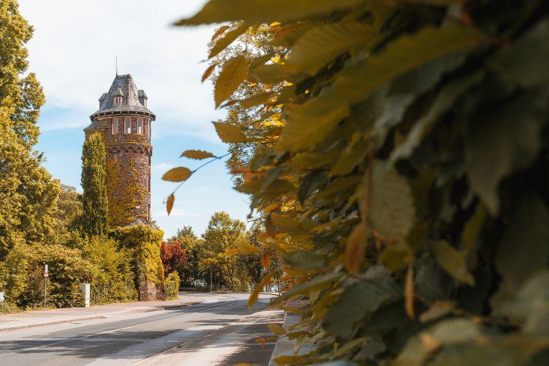 Mit Pflanzen bewachsener Turm im Süden von Monheim.