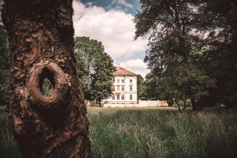 Blick vom Mickeler Busch auf Schloss Mickeln durch ein Loch in einem alten Baum