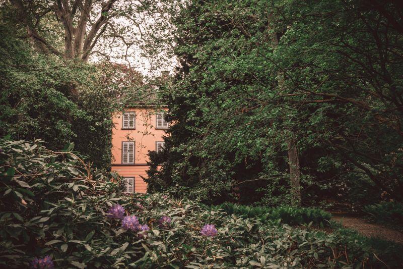 Park im Museum Insel Hombroich