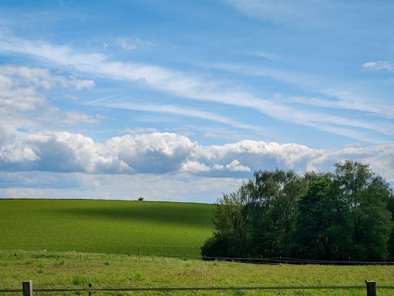 Saftig grüne Hügel mit Pferden