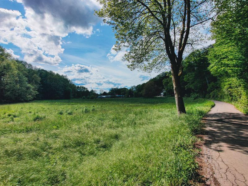 Schwarzbach Weg