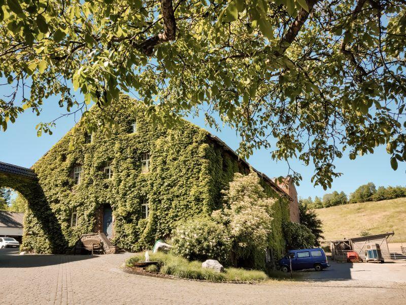 grün bewachsenes Haus im Laubachtal