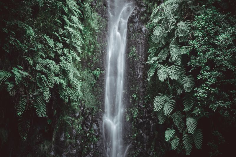 Wasserfall Madeira