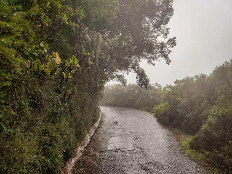 Rabacal bei Regen.